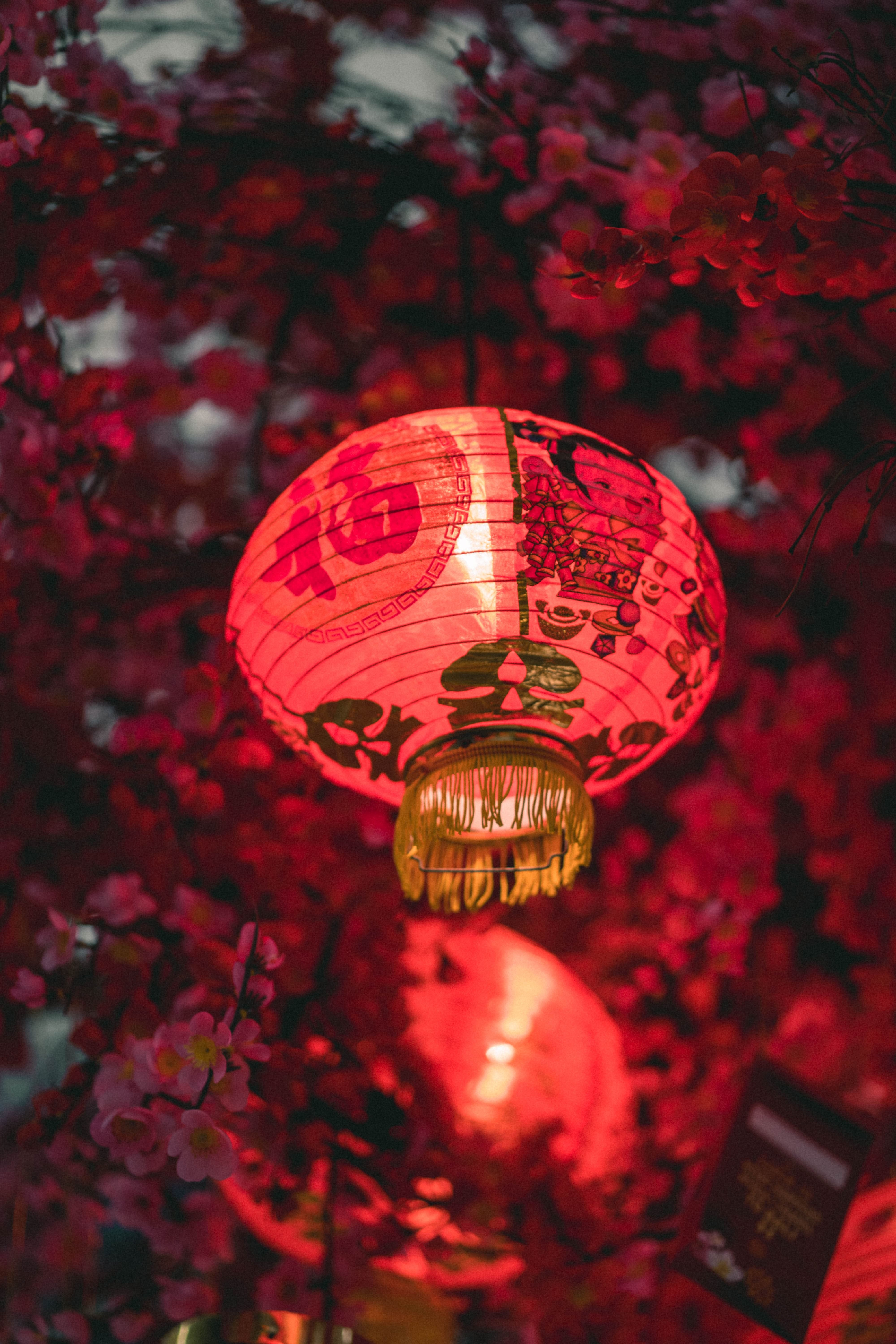 chinese new year, Chinese Tea Ceremony, Chinese Traditions, Chinese Symbolics, Olivia Buckley International